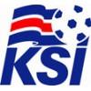 Island Trøje 2018