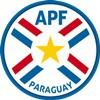 Paraguay Trøje
