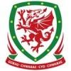 Wales EM Trøje